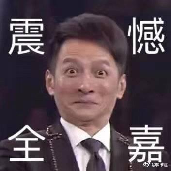 湖南卫视主持人李维嘉晚会照变表情包 我当时是看到什么啦