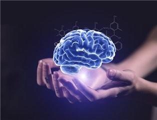 """研究稱在單位""""混日子""""的人大腦往往會早衰"""