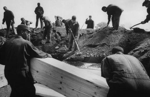 """纽约""""死亡之岛""""埋葬百万尸体 最恐怖的还在后面"""